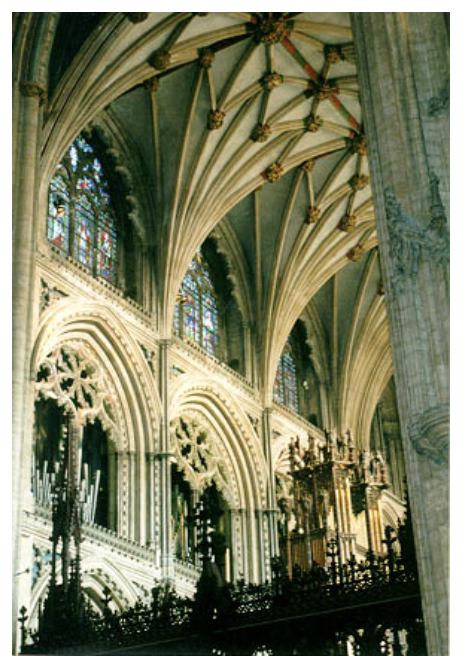 - A cathedral has many biophilic elements in the way in which it manipulates light and space and air, and material and shape and form, and color. (Source: http://www.stanford.edu/~dorris/photos/ely3.jpg)