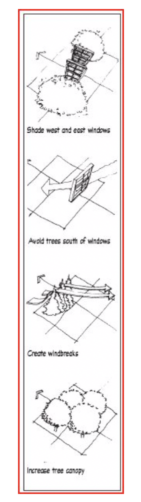 Figure 1- Strategic Tree Placement (Source: Minnesota Department of Commerce Energy Information Center)