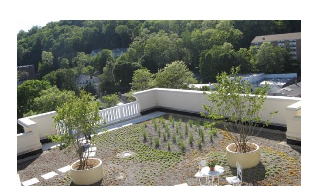 Figure 2 - The Geraldine R. Dodge Foundation headquarters green roof in Morristown, NJ (Source: Wild New Jersey)