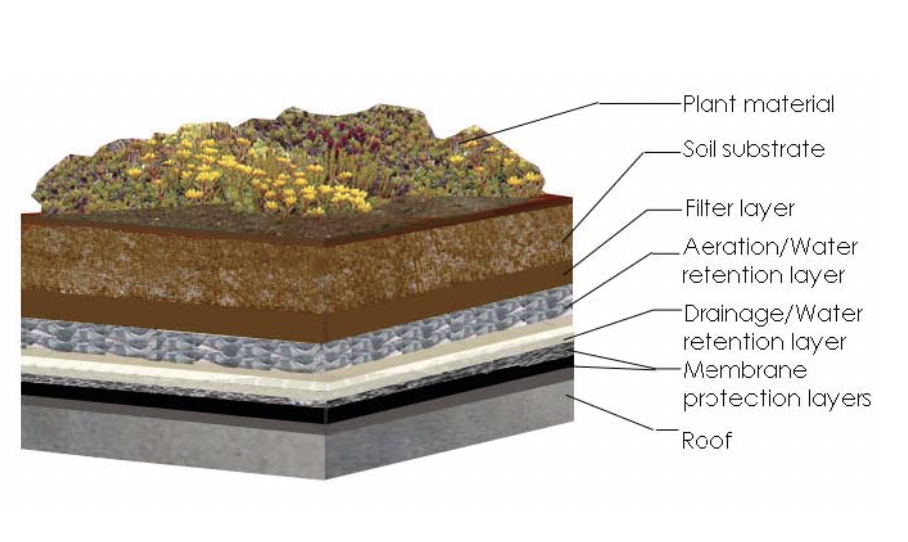 Figure 1: A basic cross-section of a vegetated roof (Source: New York City Department of Design & Construction Cool and Green Roofing Manual)